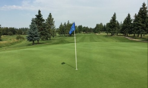 Play Ability Test #2 Draw – Stony Plain GC